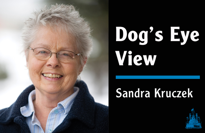 DOG'S EYE VIEW: The same breed but not the same dog