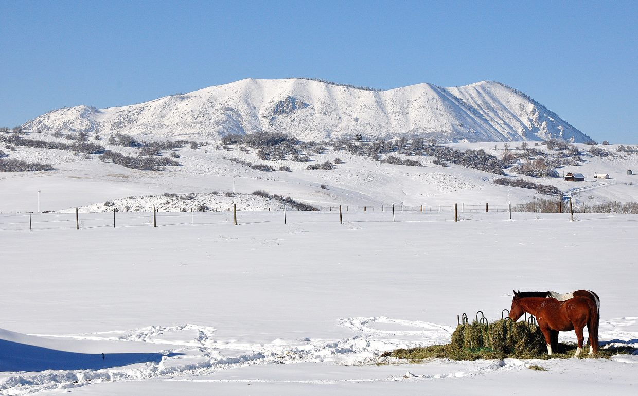 Horses graze on a cold day west of Steamboat Springs in front of Sleeping Giant.