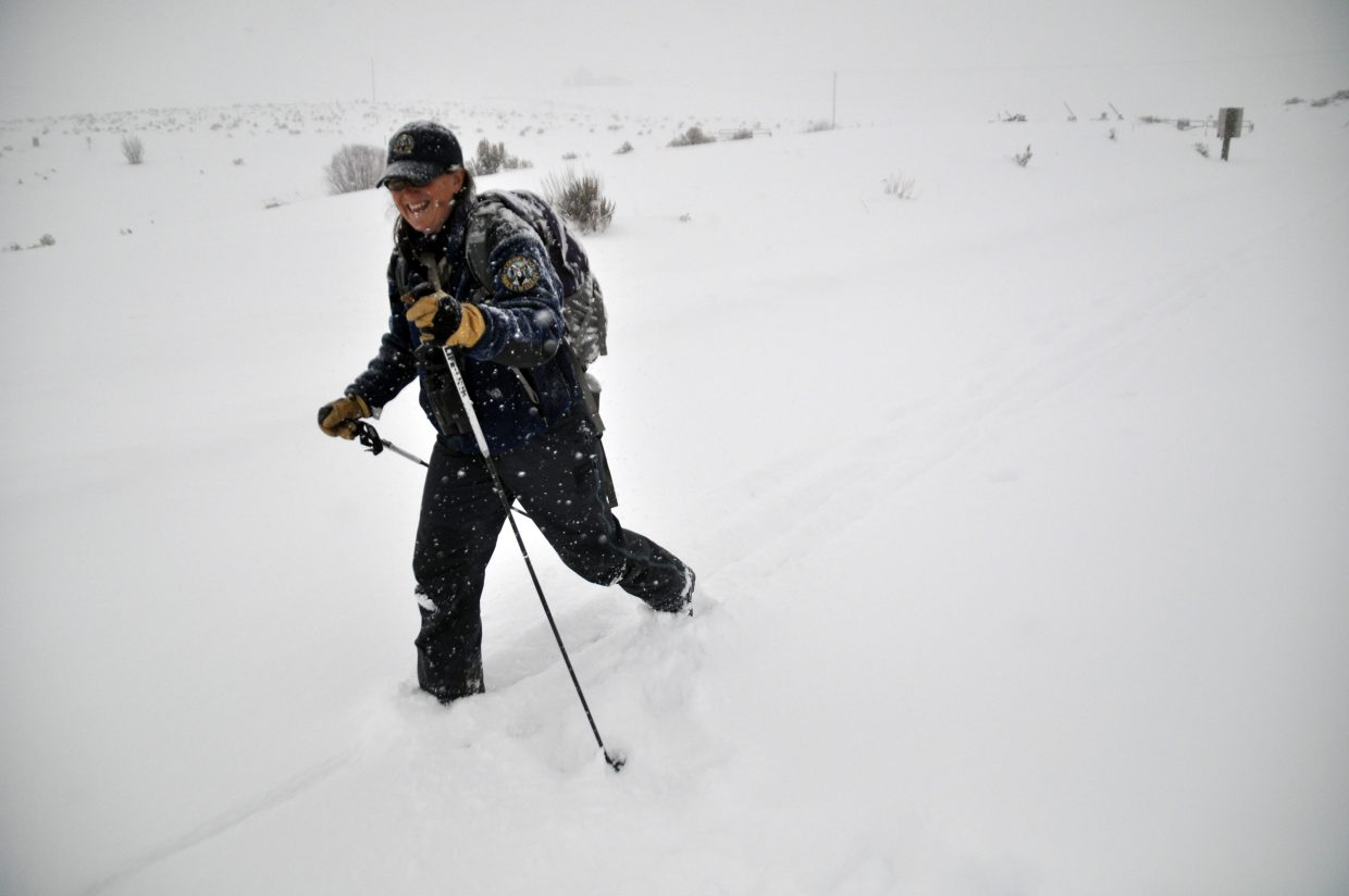 Liza Rossi sets out on skis for her leg of the bald eagle count. Rossi said the rising eagle population continues to be a big success story in Colorado and around the nation.