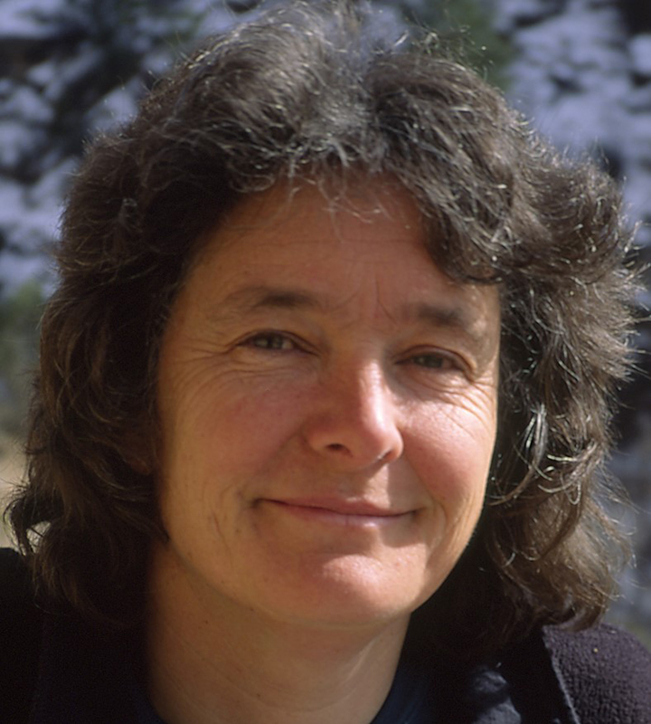 Dr. Fran Bagenal, professor of astrophysical and planetary sciences at University of Colorado, Boulder, will speak Wednesday evening at Colorado Mountain College about the New Horizons mission to Pluto.