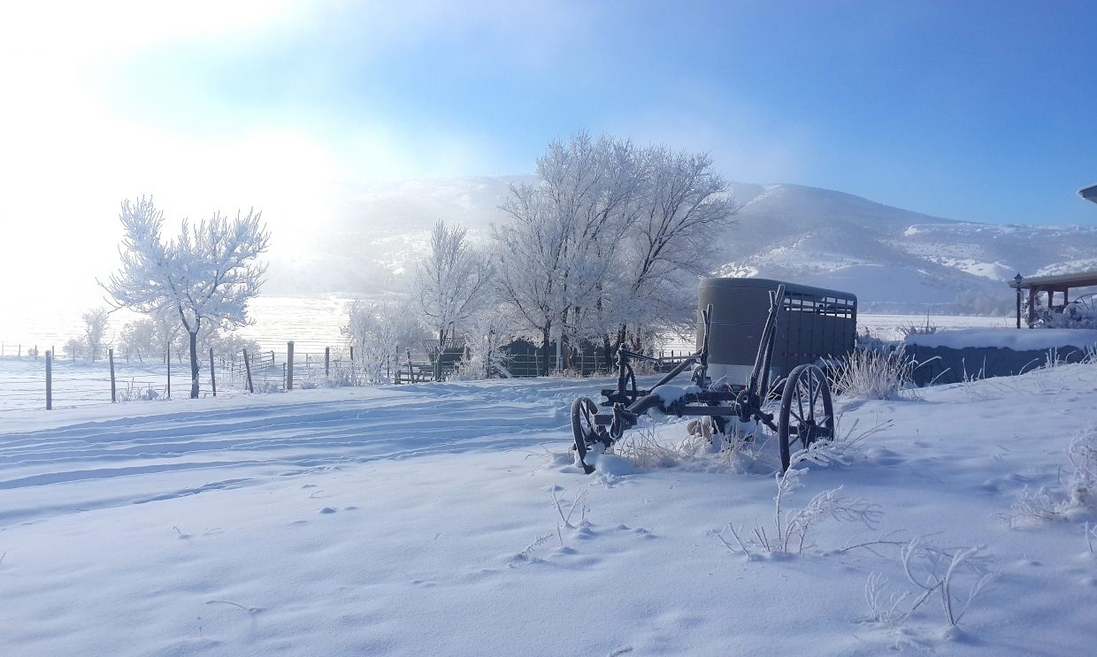 """Judy Valentine, of Maybell, snapped this photo of a winter wonderland. """"This is a picture I took near Maybell. I think the cold temperatures have given us some beautiful photo opportunities,"""" Valentine said of the photo. Do you have a photo you'd like to see published in the Craig Daily Press? Send submissions to editor@CraigDailyPress.com."""