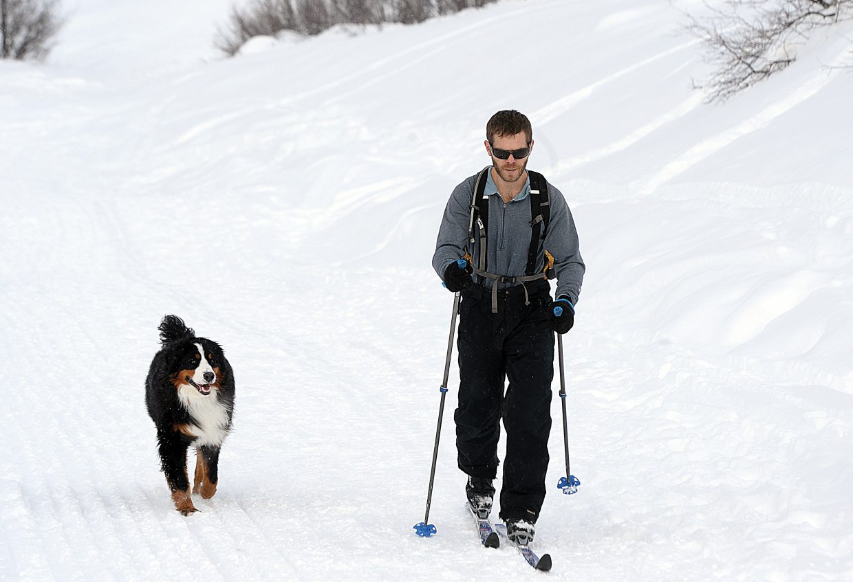 Casey Homuth and his dog take advantage of this week's mild weather to set off on a cross-country skiing adventure.