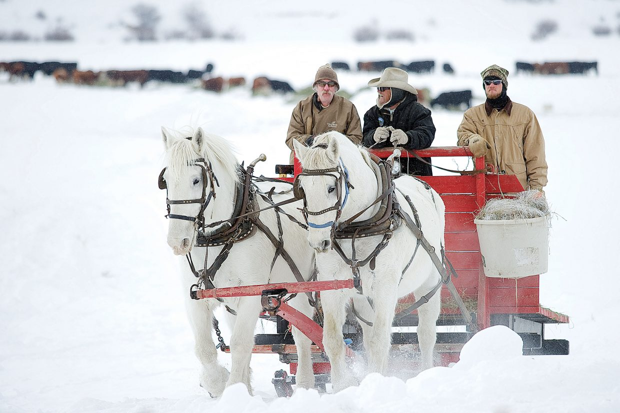 Paul Orton drives his horse team toward home after feeding the cattle on his family ranch just off Routt County Road 179 between Steamboat Springs and Milner. Orton got a hand completing the feeding from Dave Knoblauch, left, and Sam Orton, right. Sam is Paul's son.