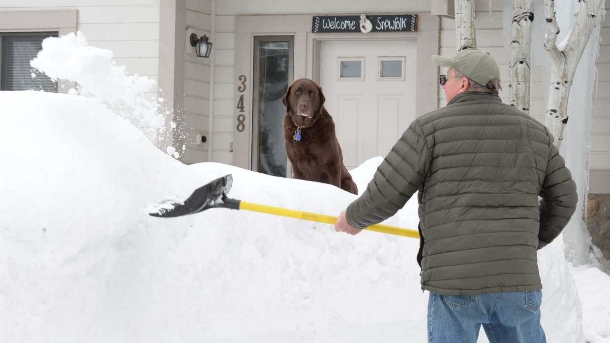 Tobias didn't show a whole lot of enthusiasm as he watched owner Scott Ford shovel out his driveway on Cherry Drive. Local residents were digging out Monday after a winter storm dumped several inches of snow in the area.