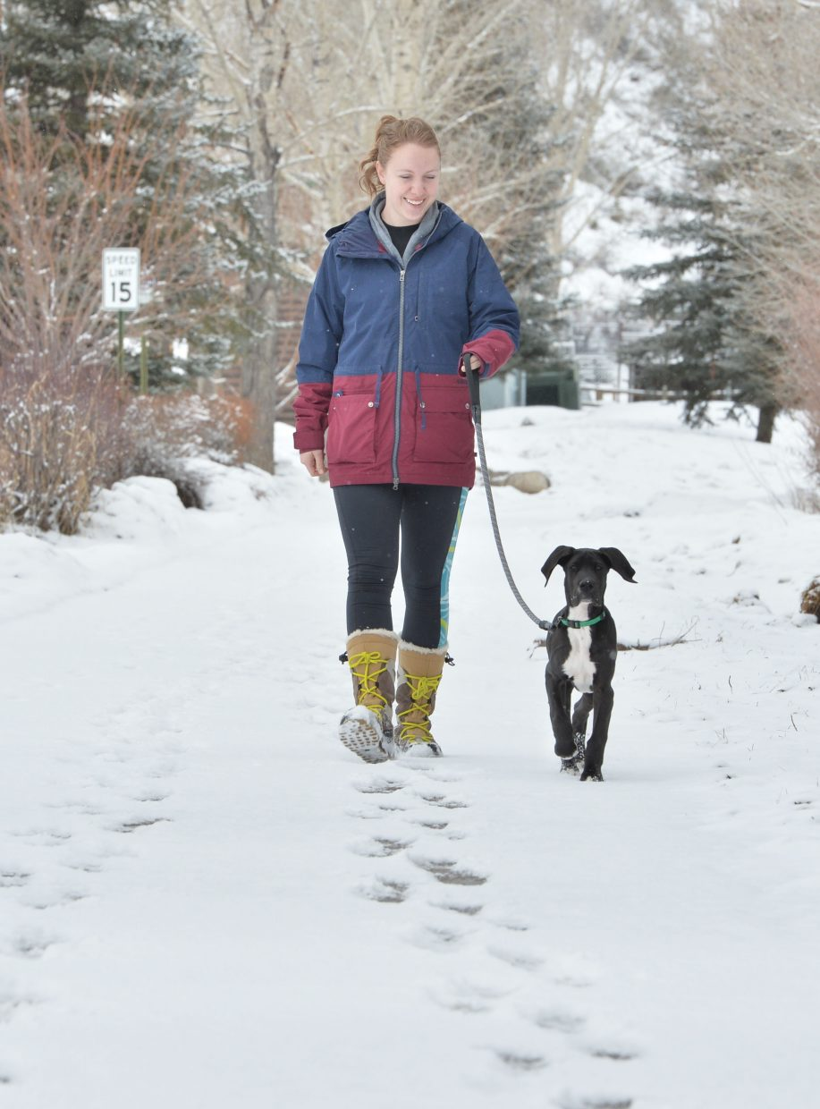 A fresh layer of snow covered the Yampa River Core Trail Monday morning as Katie Stamer and her dog Scout ventured outside for a walk.