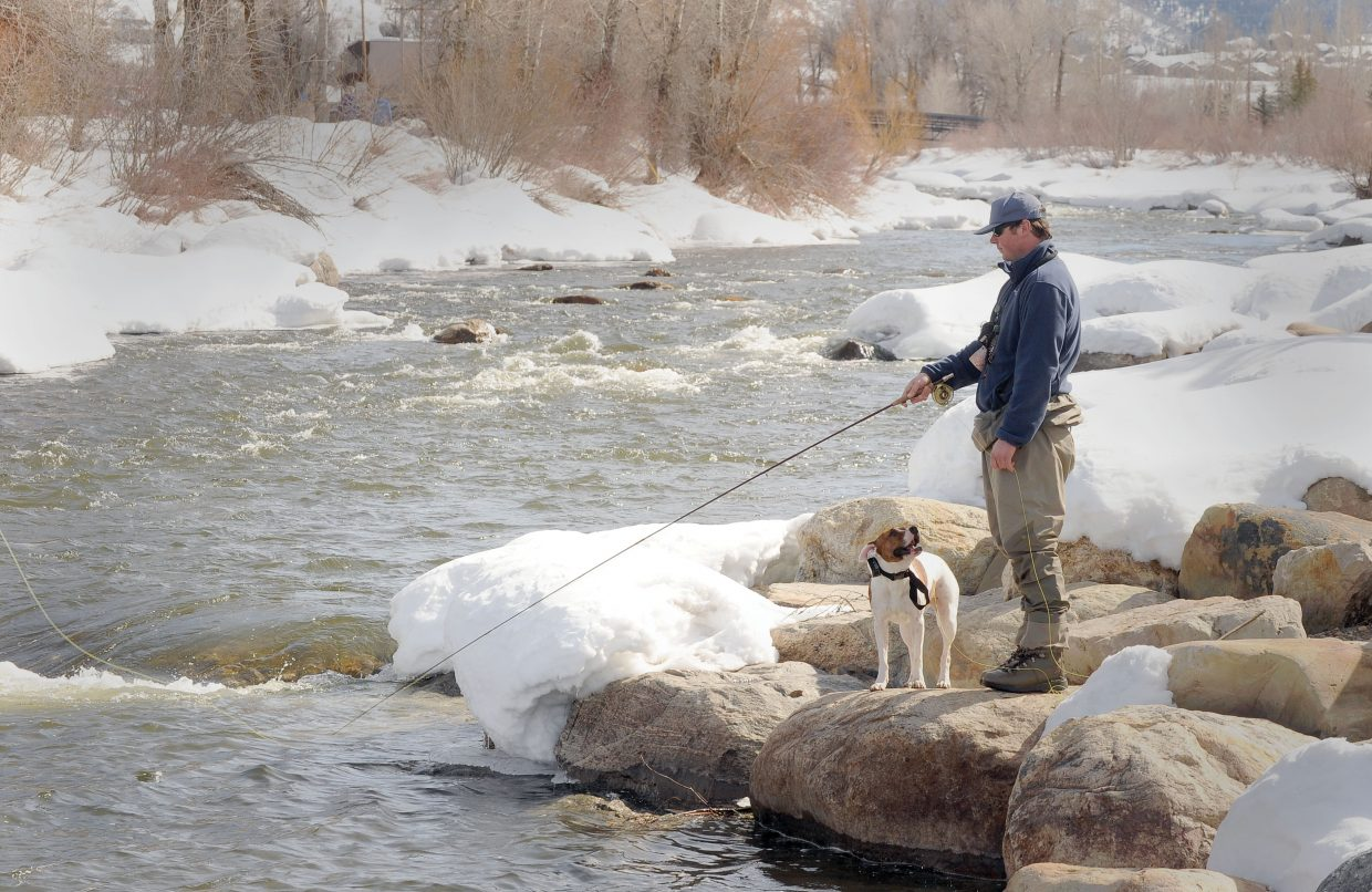 Zoey, a pit bull mix, seems to tell owner Bashi Bradley it was time to stop fishing and take a walk Monday afternoon by the Yampa River in Steamboat Springs. The day's high temperatures made conditions perfect for fishing and walking the dog. Unfortunately for Zoey, Bradley seemed to be hooked on the idea of fishing.