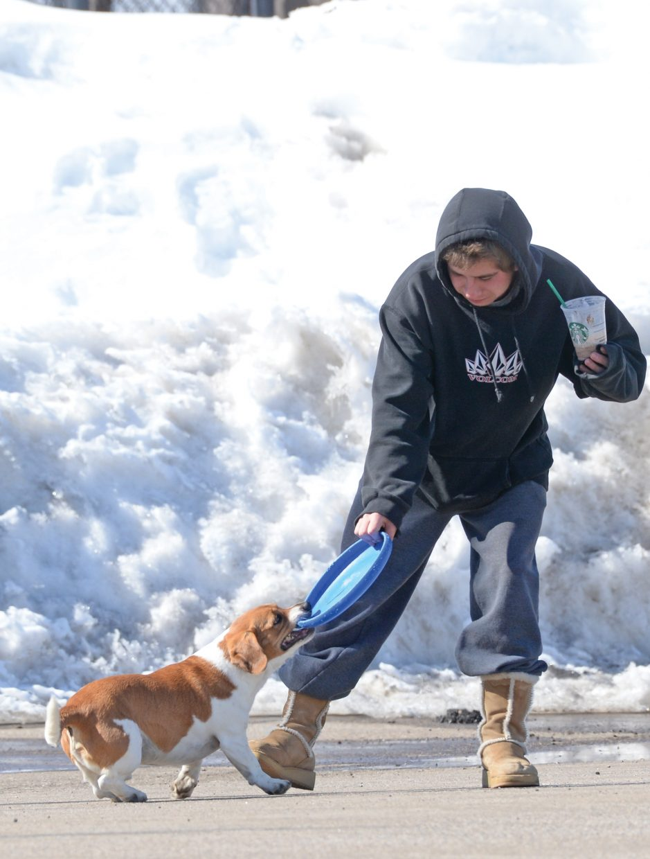 Dillon Kidder attempts to wrestle a frisbee away from his dog, Bruiser, while hanging out in the Howelsen Hill parking lot with a friend Friday afternoon. Warm temperatures had locals and their dogs thinking about spring.