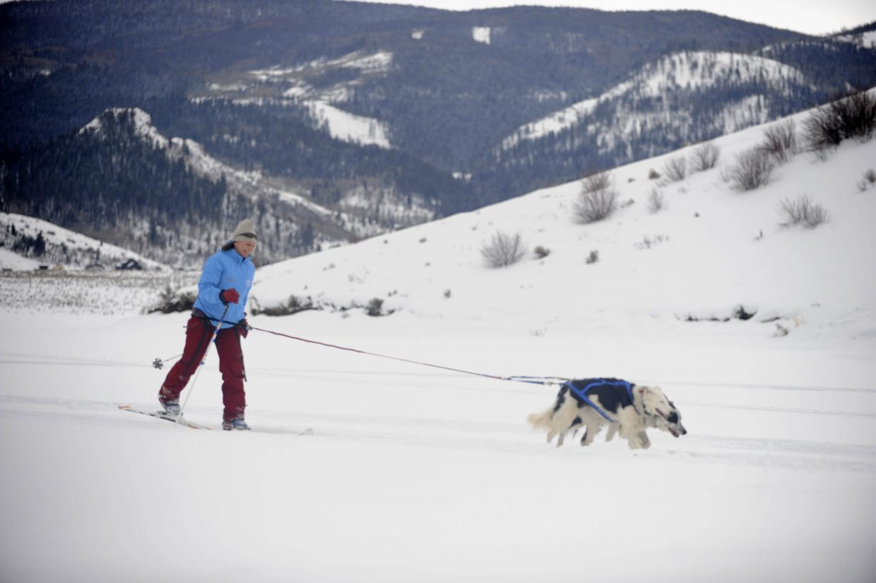 Louisa Morrissey with High County Dogs skis with her dogs Linus and Rerun during the Debunk the Winter Funk event Saturday at Stagecoach State park. Morrissey was offering skijoring demonstrations.