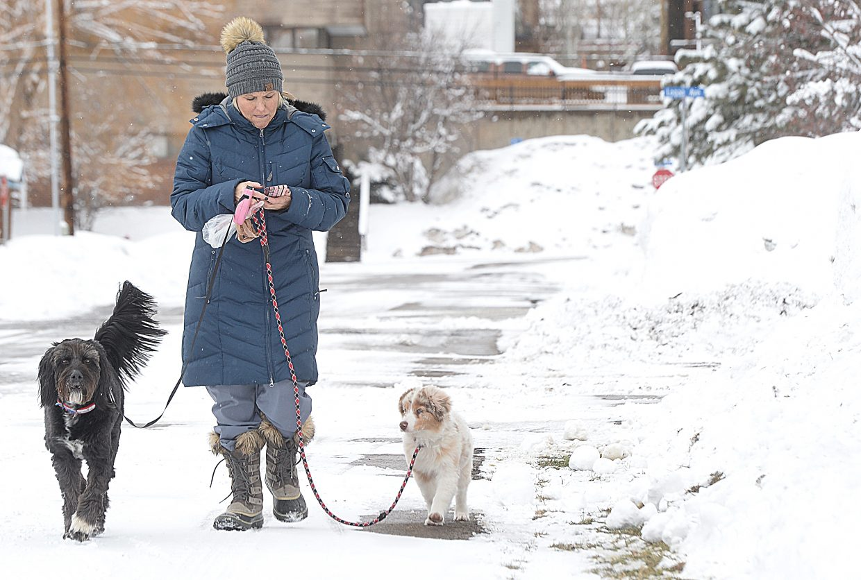 TC Myers braved the chilly temperatures Tuesday to take T-Bone, on left, and Cactus for a walk in downtown Steamboat Springs.