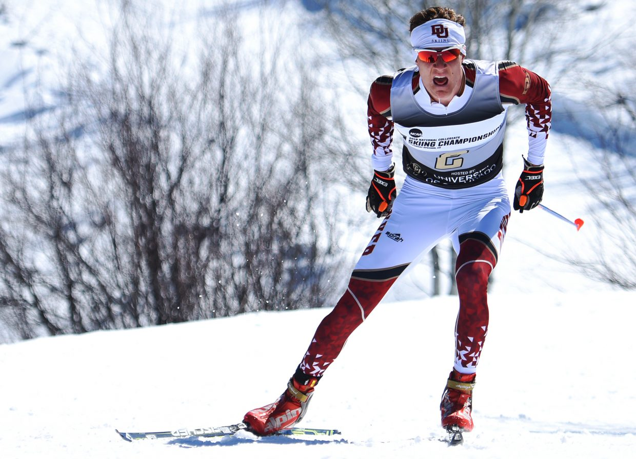 University of Denver skier Moritz Madlener cruises down the trail Thursday during the NCAA Skiing Championships in Steamboat Springs. He went on to place third.
