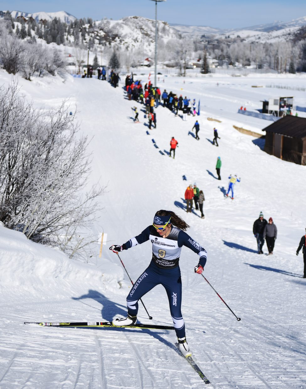 Middlebury skier Annie Pokorny skis up Emerald Mountain on Thursday during the NCAA Skiing Championships in Steamboat Springs.