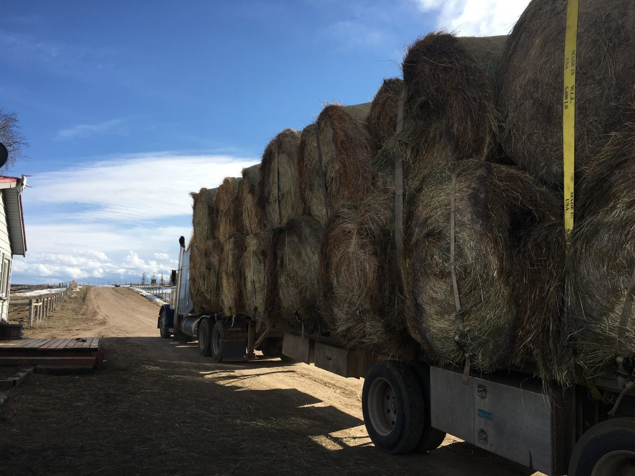 After taking this load of hay to Kansas ranchers who were devastated by wildfires, Hayden trucker Donnie Hayes said he knew what hell looks like.