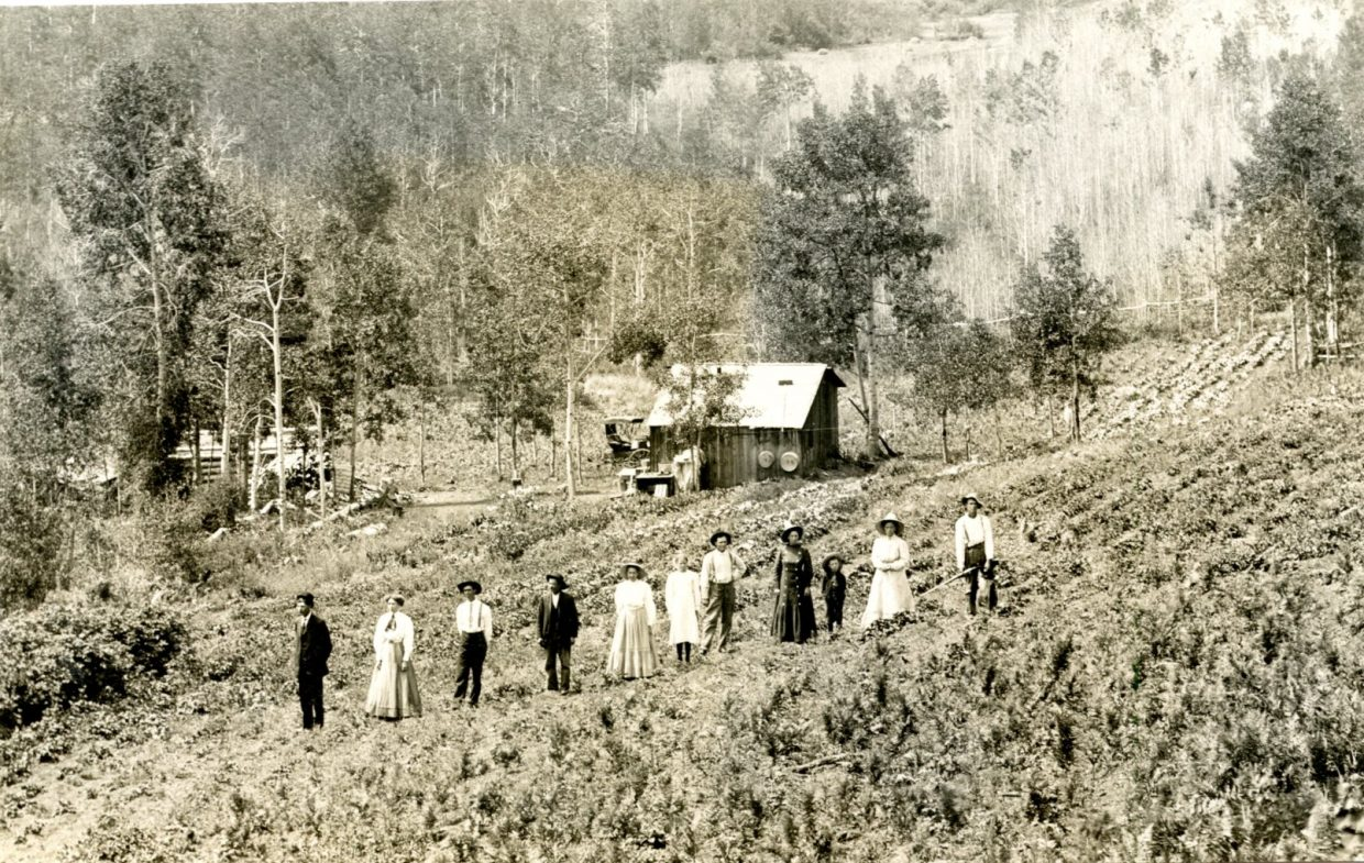 Some historic photographs are so detailed and imbued with such clarity that the historian lurking in all of us can't help but wonder who the people are. Two such photos recently have come into the collection of the Museum of Northwest Colorado in Craig. These two images, taken by Steamboat Springs photographer T.W. Lowrey, show two groups of people at a homestead site that appears to be in the mountains near Steamboat. One of the women, a young girl and one of the men appear in both of the images. There are row crops in one of the photos, and the homestead compound has been fenced off carefully to keep out wildlife. The Museum of Northwest Colorado would like to hear from anyone able to help identify these people and the location. Contact the museum at 970-824-6360 or musnwco@moffatcounty.net with any information you might have about these photos.