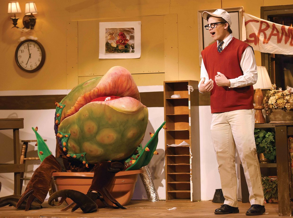 "Charlie Harrington, playing the part of Seymour, discusses what might be on the menu with a very hungry plant while rehearsing a scene for the upcoming Steamboat Springs High School's presentation of ""Little Shop of Horrors."" The show will open at 7 p.m. Thursday in the high school auditorium. Additional shows are set for 7 p.m. Friday and 2 p.m. and 7 p.m. Saturday."