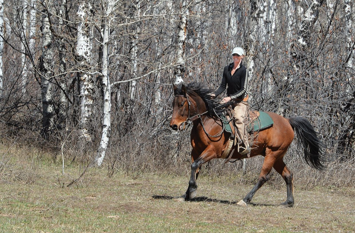 Clare Sivley spent Monday afternoon working with Rocky, a quarter horse-Arabian mix, on her property located along Routt County Road 36 on the way to Strawberry Park Hot Springs.