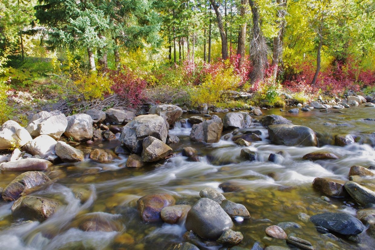 Fall colors along Fish Creek. Submitted by: Matt Helm