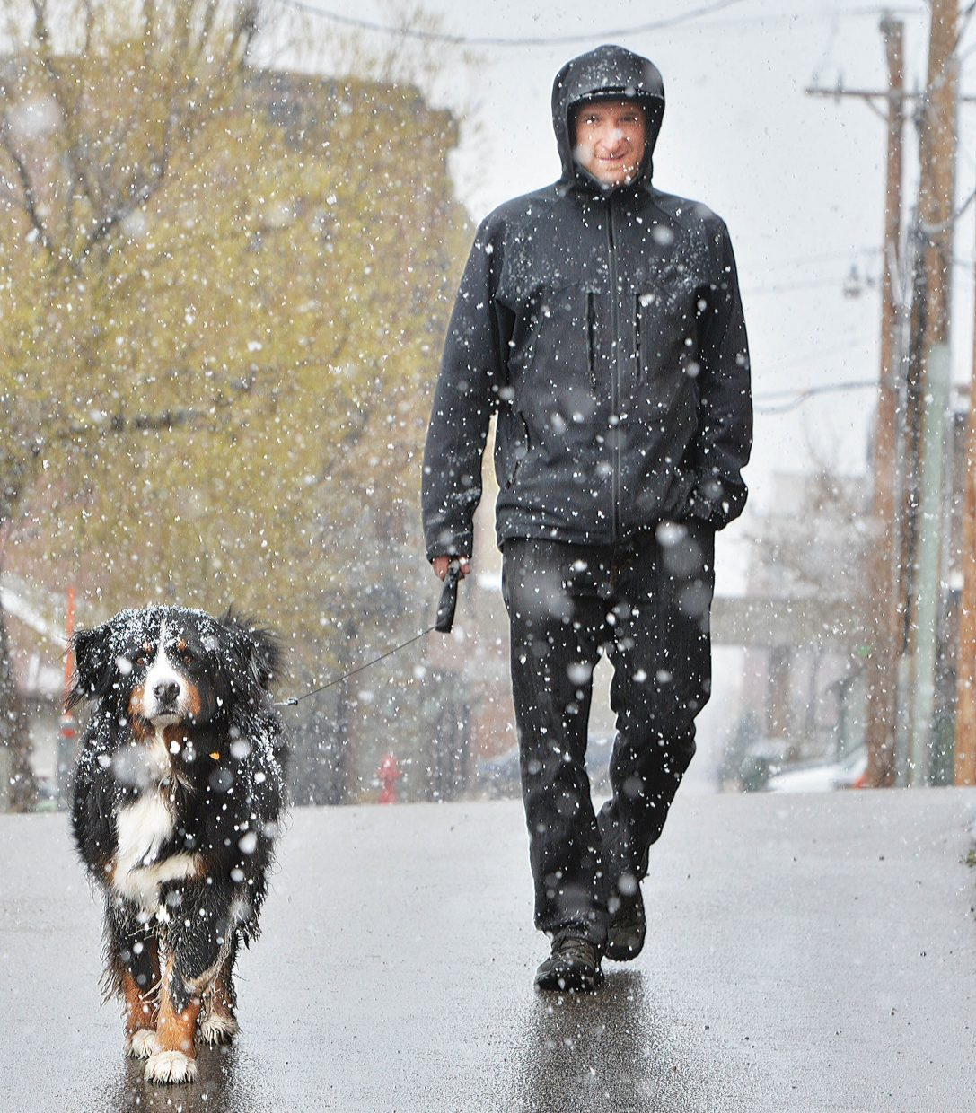 Brian Alpart and his dog, Marvin, make their way through downtown Steamboat Springs on Wednesday morning. The pair was greeted by falling snow as winter returned to the Yampa Valley for one more round.