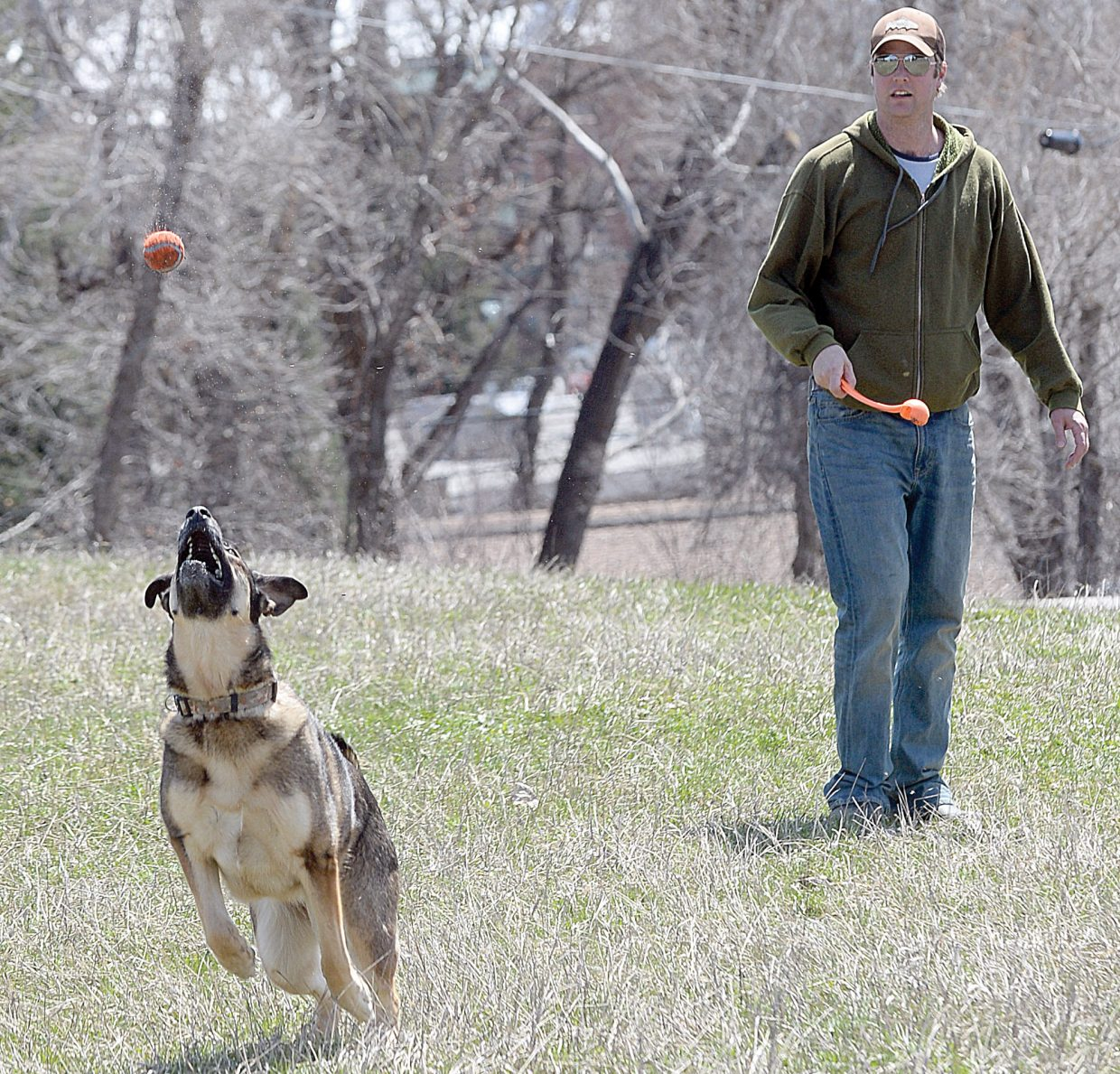 Kona the dog chases after a tennis ball thrown by Joe Belcher while playing in the Triangle area in downtown Steamboat Springs on Thursday afternoon.
