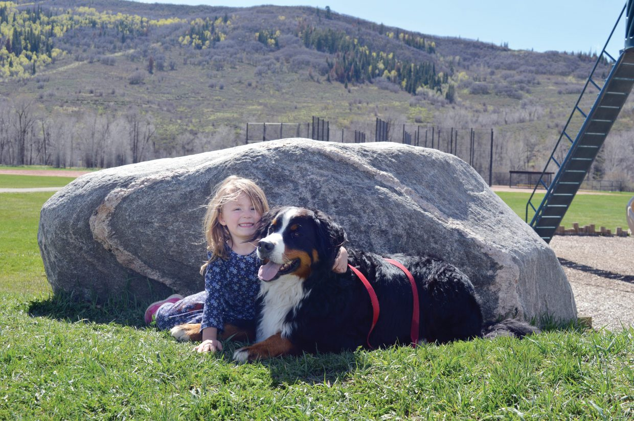 Lucille Pace-Dietrich, 5, and her Bernese Mountain dog Hoss enjoy a picnic in Emerald Park Wednesday.