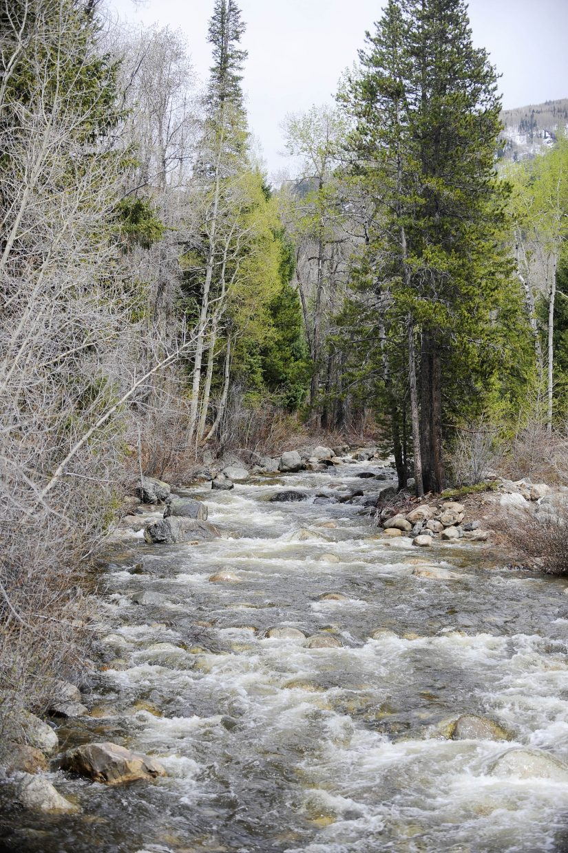 Water flows down Fish Creek on Thursday. With ample snowpack, water providers have not implemented Stage 2 water restrictions.