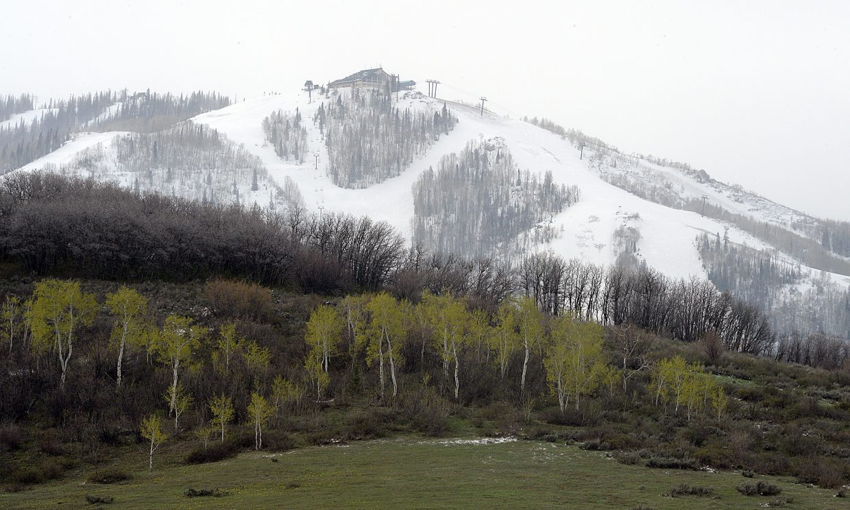 Green trees stand in stark contrast to the snow that covered the slopes of Steamboat Ski Area on Monday morning. A spring storm brought several inches of snow at higher elevations, but most of what fell in town had melted by Monday morning.