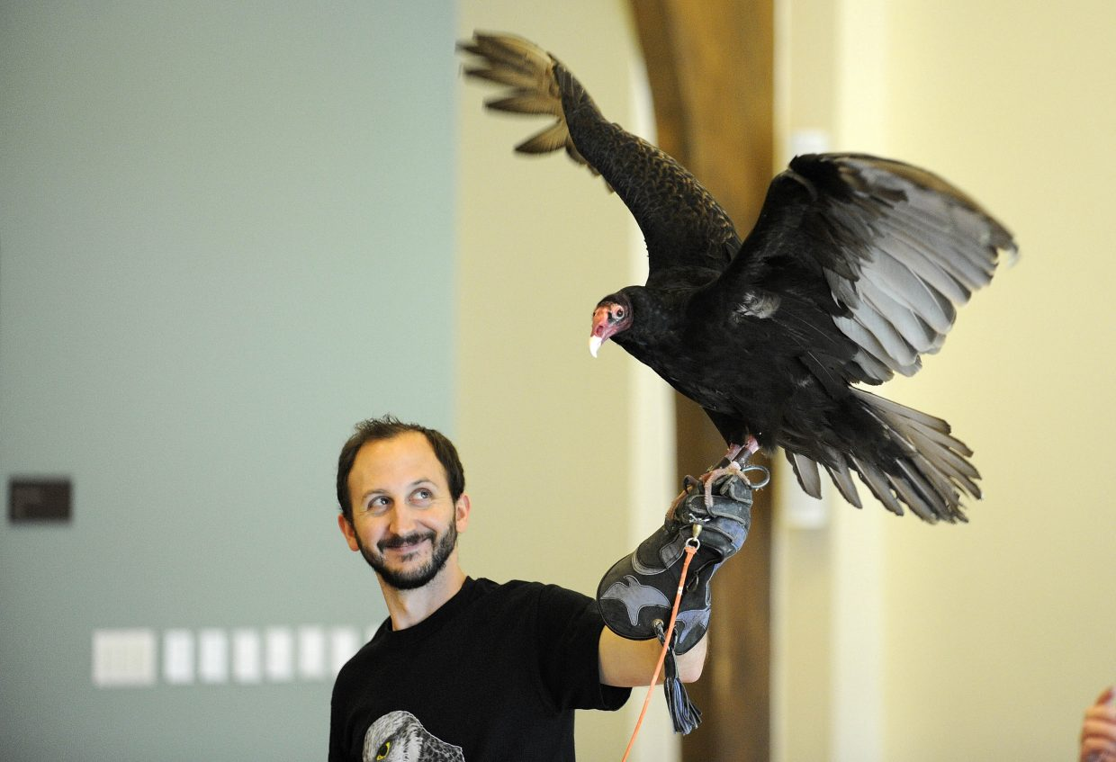 Evan Jaffe, a volunteer with Nature's Educators, displays a turkey vulture Saturday during an International Migratory Bird Day event at Bud Werner Memorial Library.