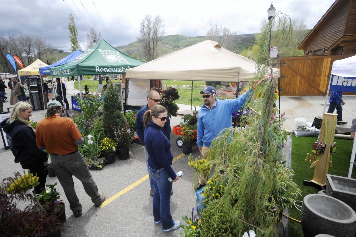 People check out the plants at the Gecko Landscape & Design booth during the Steamboat Living Home and Garden Expo on Saturday at the Steamboat Springs Community Center.
