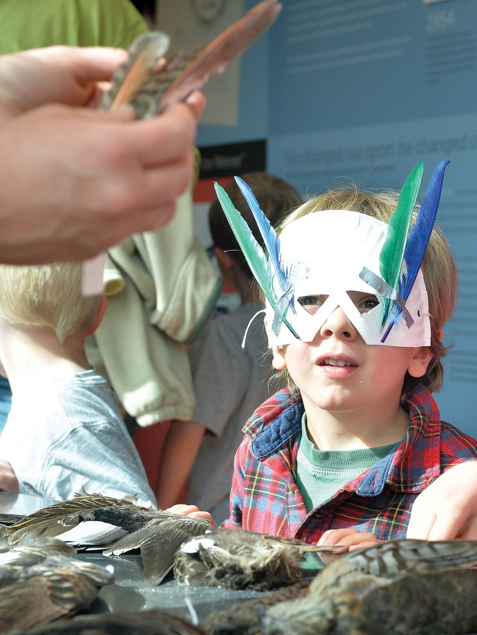 Four-year-old Everett Baldwin checks out the feathers of birds during a celebration Tuesday evening of International Migratory Bird Day at the Bud Werner Library in Steamboat Springs. Children made masks, played games and checked out several demonstrations including this table filled with bird feathers, and another on in Library Hall with live birds including a great horned owl, a Swainson's Hawk and an American kestral.