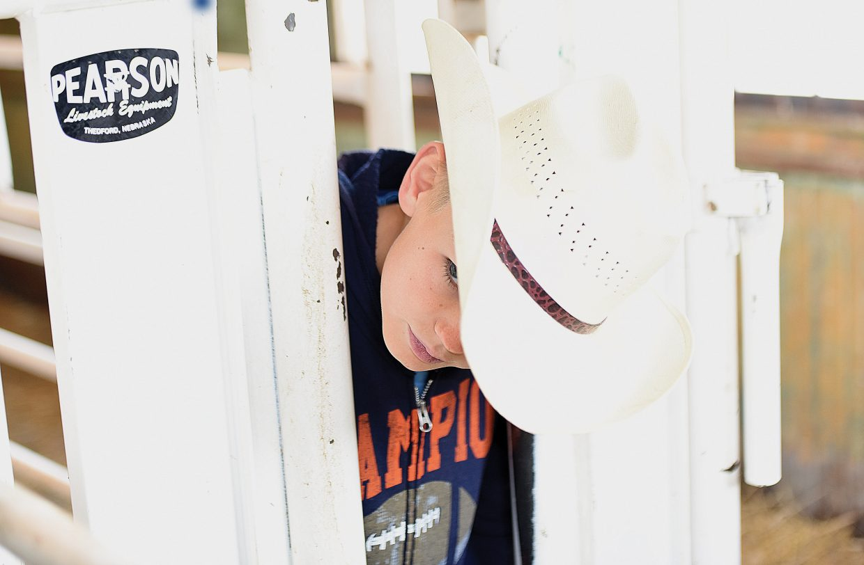 Hayden Elementary School student Dorian Hotchkiss sticks his head through a gate as he checks out one of the chutes at the Coyote Creek Ranch near Hayden Wednesday as part of Ranch Days. Routt County students were invited to working ranches in the area to learn about the world of ranching and its long history.