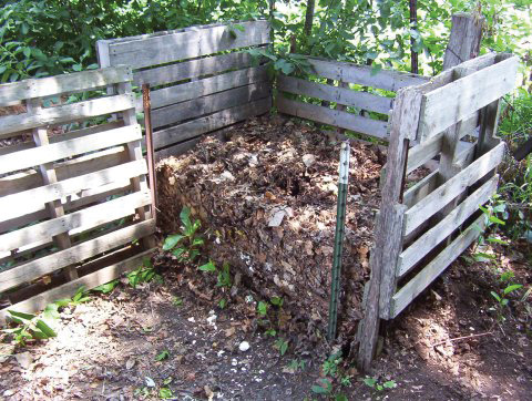 If your soil has been well-tended by the addition of compost and mulches, there may be no need for supplemental fertilizer.