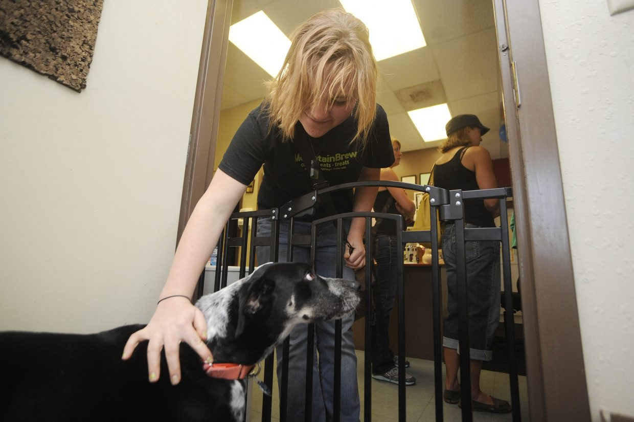 Izzy Mumm visits Frankie during the Routt County Humane Society open house Saturday. The Humane Society took over operation of the shelter from the city of Steamboat Springs on May 1.
