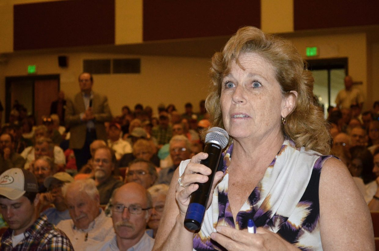 Bonnie Petersen, executive director of the Associated Governments of Northwest Colorado, participates in the question and answer portion of a forum held Wednesday night regarding Colowyo.