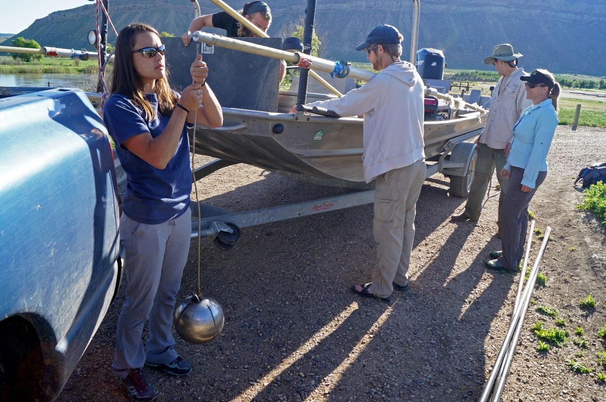 Kristina Morben, a seasonal fishery technician with Colorado Parks and Wildlife, sets up one of the metal balls that will serve as an anode on the shock boat.