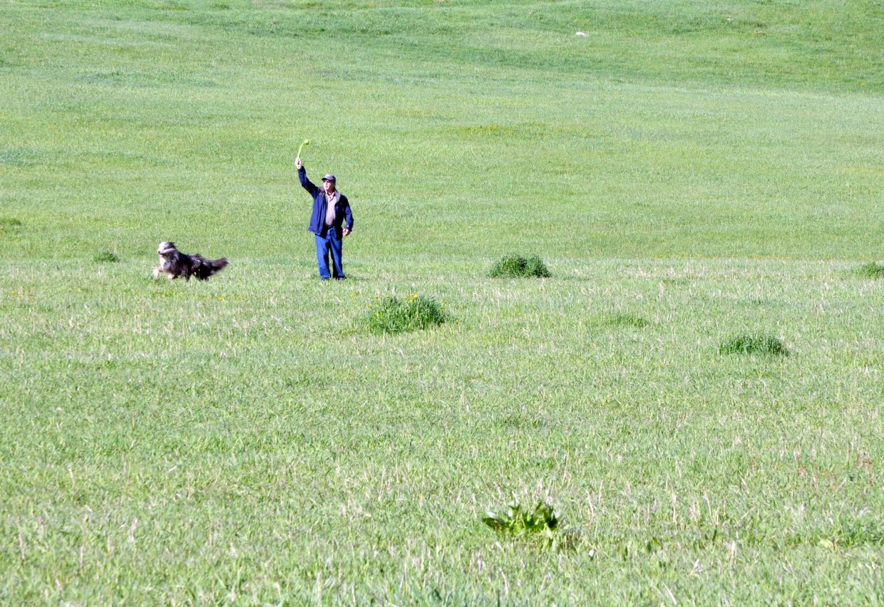 John Waldman plays a game of fetch with his dog Luna in Rita Valentine Park. The Steamboat Springs Parks and Recreation Commission on Wednesday night will discuss whether the park should be opened up to more recreational users.