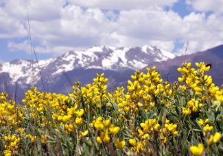 Road trip, anyone? Get out of town and into nature for National Park Week