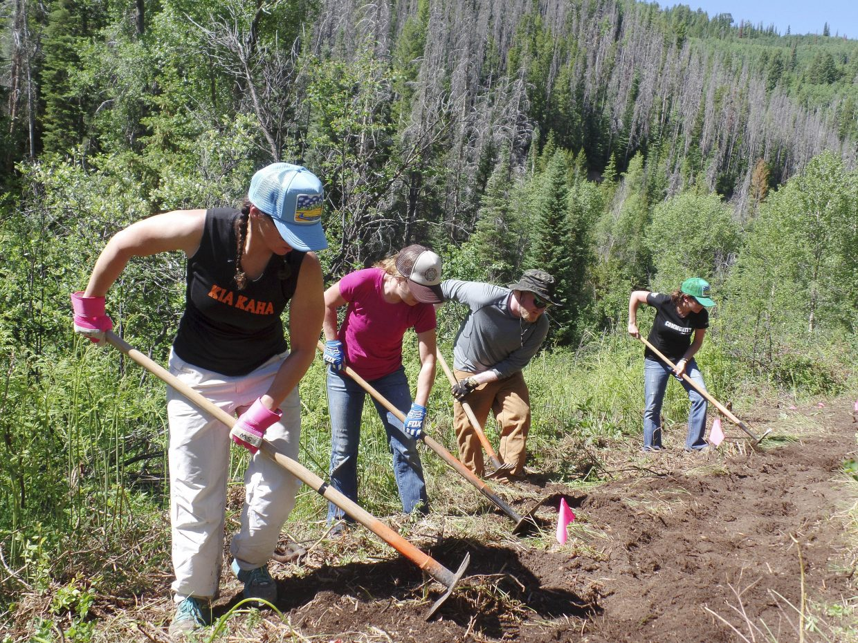 Smartwool employees work Friday on a new section of the Hot Springs Trail.
