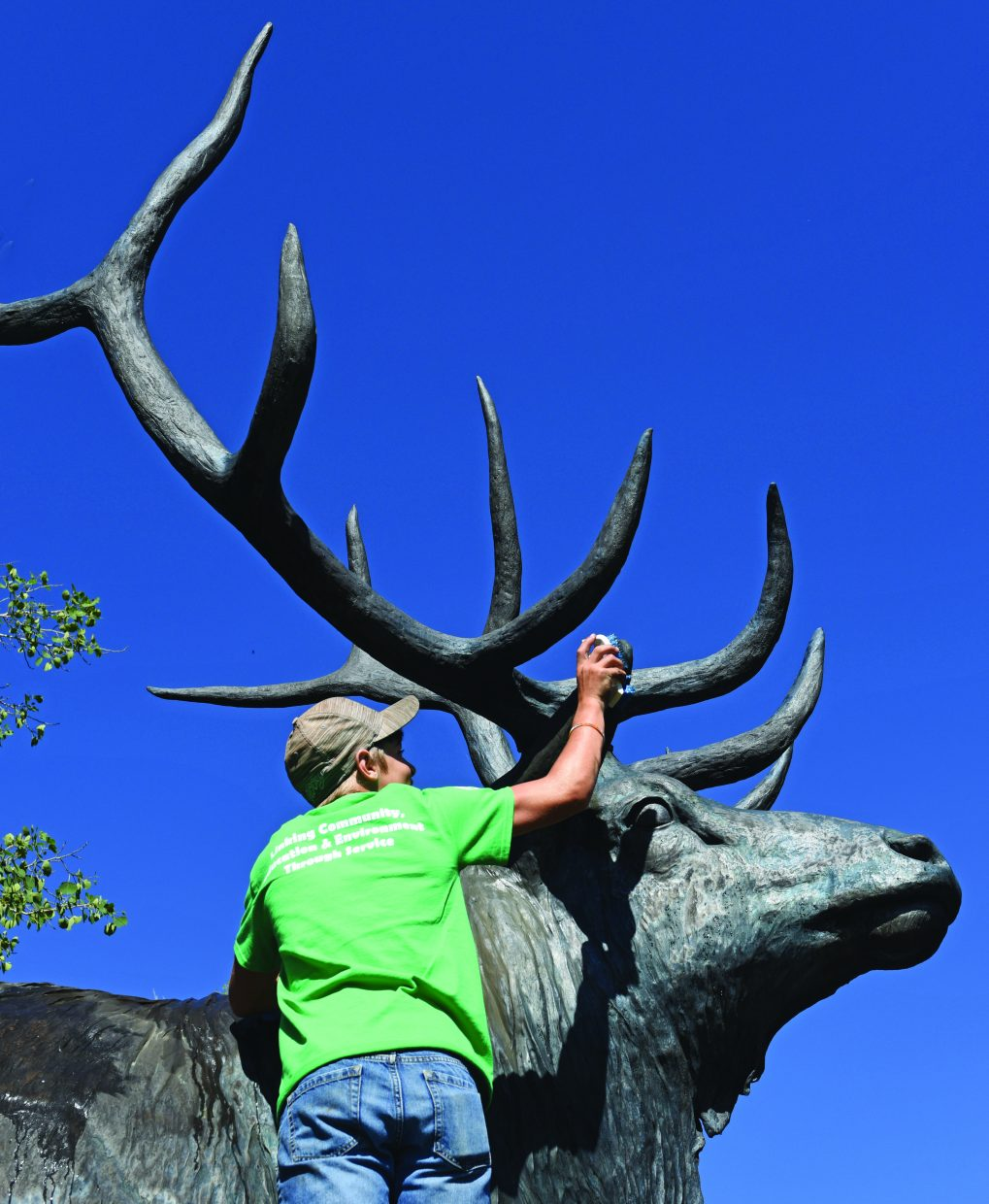Daylon Frentress cleans the elk statue in West Lincoln Park Monday morning while working with the Rocky Mountain Youth Corps Community Development Program. A crew leader said the group plans to clean and wax several sculptures in the area over the next several days.
