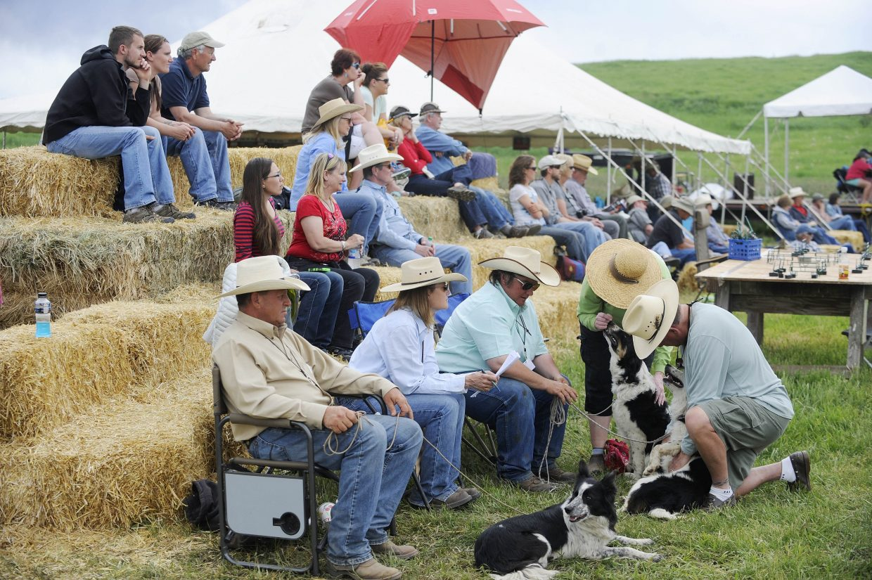 Spectators watch the competition during the National Cattledog Association National Finals in Saturday at Flying Diamond Ranch.