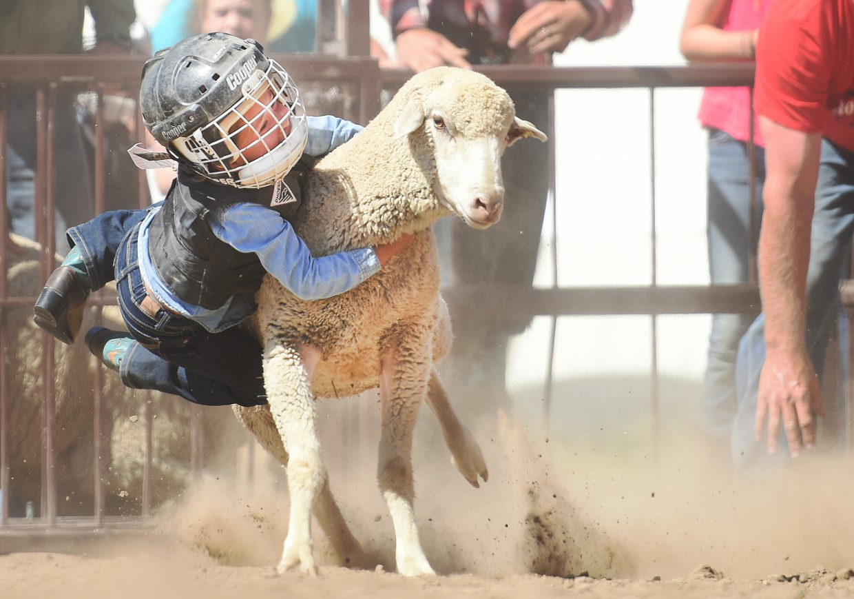 Bailey Fernandez, from Oak Creek, clings to her lamb as hard as she can as it dashes down the track at the Routt County Fairgrounds on Sunday during the Mutton Bustin' competition. Bailey was one of 15 riders to give the lambs a try on Sunday, the last day of the fair.