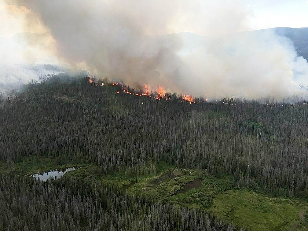 The Beaver Creek Fire has burned 785 acres in the Routt National Forest.