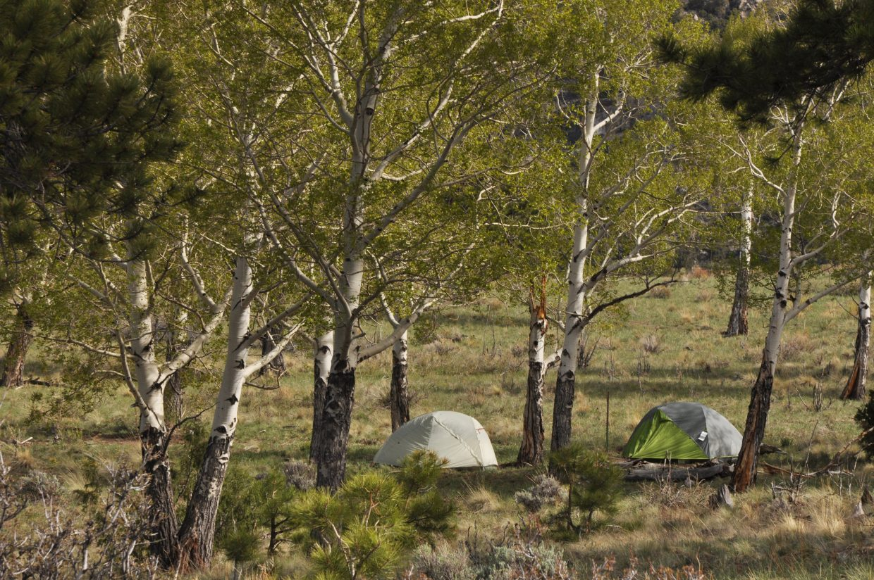 The Aspen backcountry campsite, one of several along the Sand Ramp Trail, is tucked in a quiet aspen grove that has panoramic views of the entire dune field.