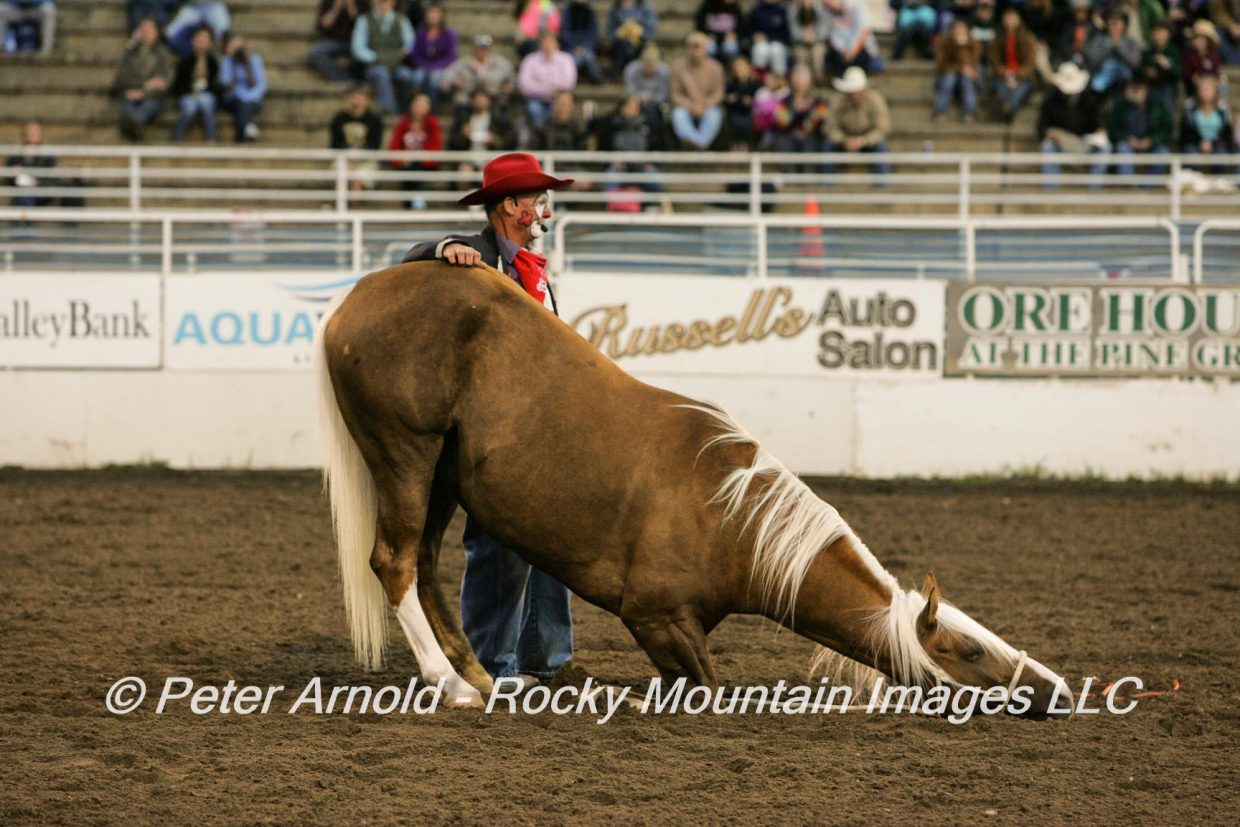 Praying Horse-Rich Isley, rodeo act. Submitted by Peter Arnold.