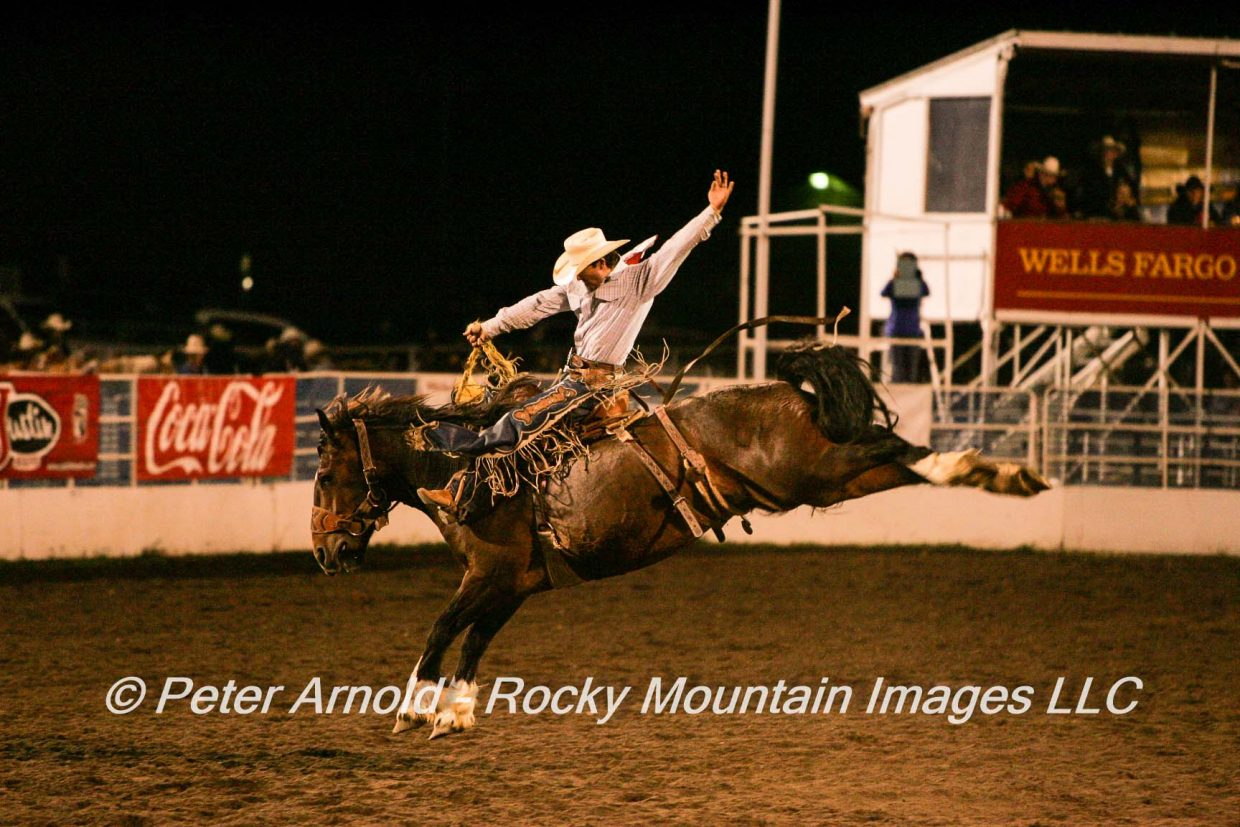 Action images from Friday June 27, 2014 at the Steamboat Pro Rodeo. Submitted by Peter Arnold.