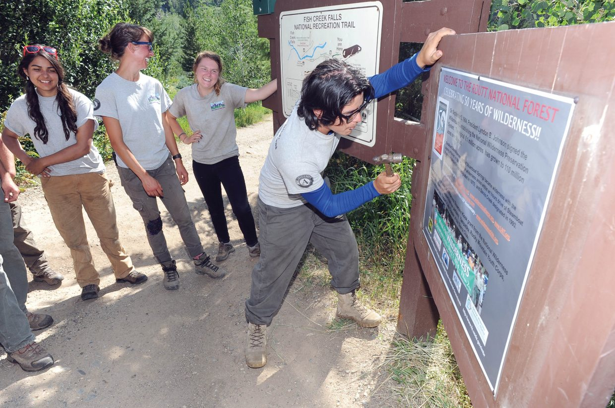 Leonardo Aguilar, of the Rocky Mountain Youth Corps, uses a hammer to post a sign recognizing 50 years since the Wilderness Act on sign board at the Fish Creek Falls Trailhead. The posting of the sign was part of a public ceremony. Members of the Rocky Mountain Youth Corps were present at the event, and Yampatika volunteers also gave an educational presentation about wilderness and the Wilderness Act.