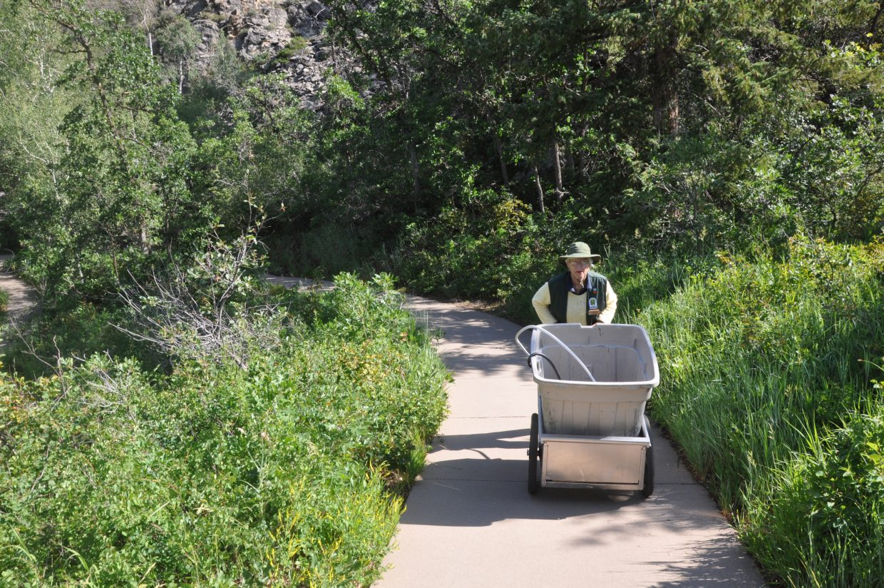 Nina Lowe pushes a large bucket of water up the overlook trail at Fish Creek Falls. Lowe spends each morning watering flowers planted by master gardeners from Colorado State University.