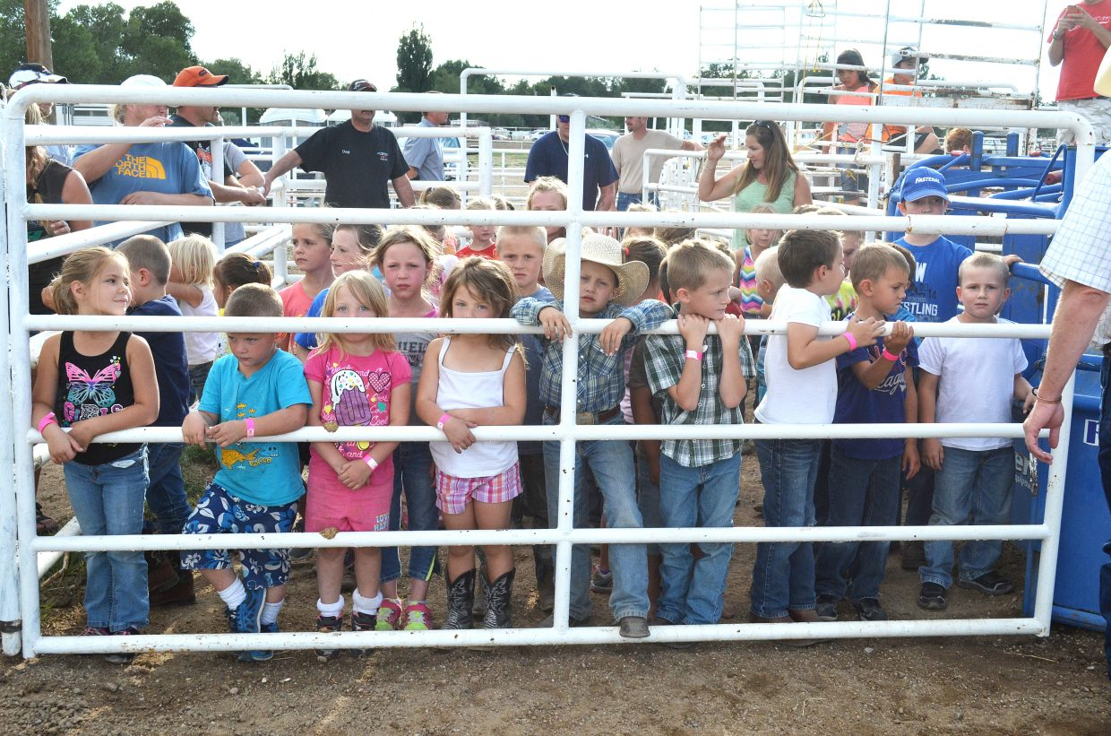 Children line up for the Catch-A-Pig contest at the 2014 Moffat County Fair.