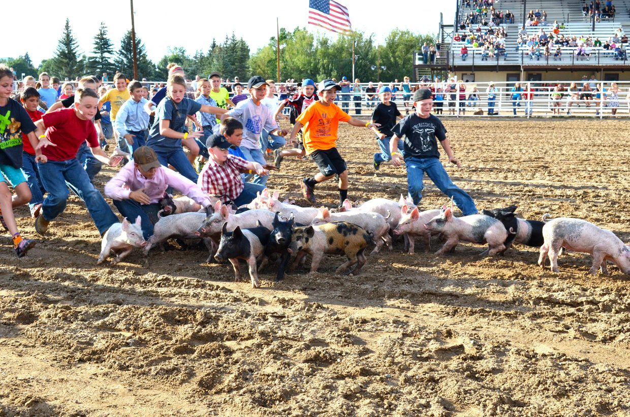 Moffat County youth chase after pigs at Moffat County Fairgrounds.