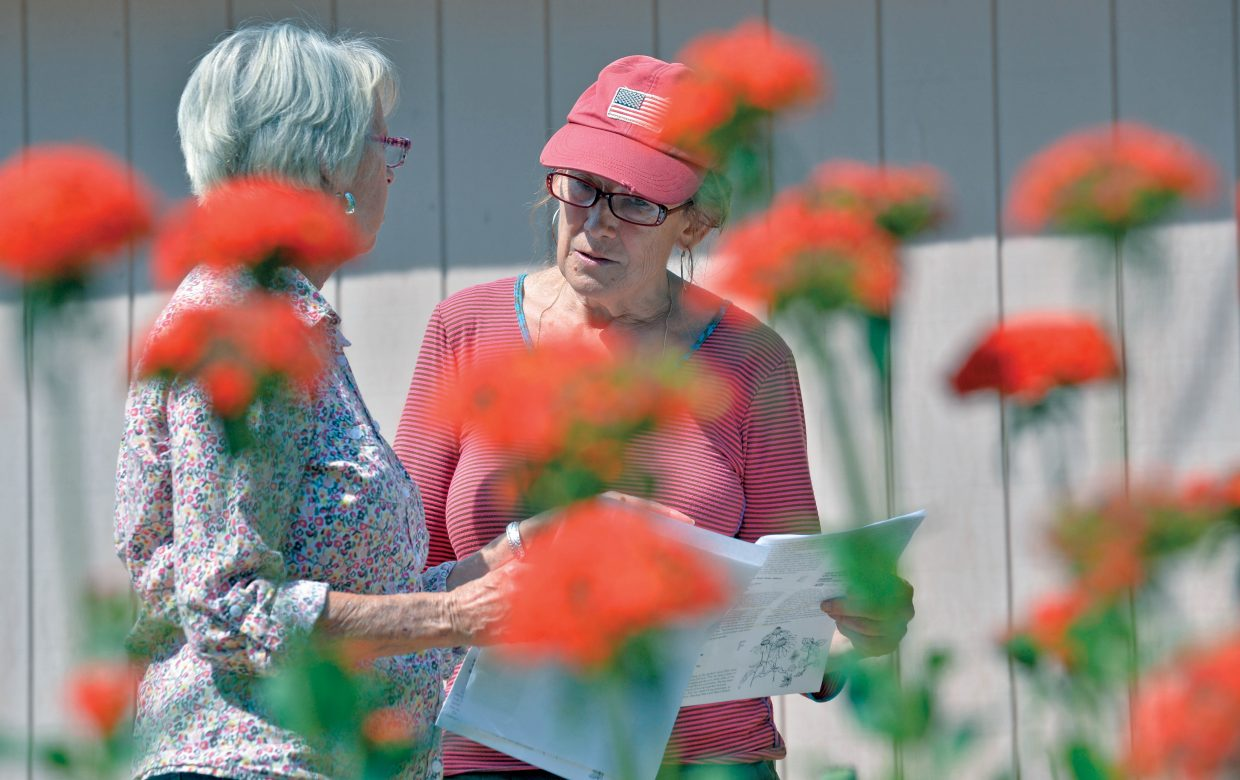 Sharon Jost, left, and Cathy Vogelaar share information while takeing a tour of this year's String's Music Festival Garden and Kitchen Tour. Organizers and volunteers got a sneak peak at this year's tour earlier this week. The tour will take place Saturday and includes eight stops in the Steamboat Springs area.