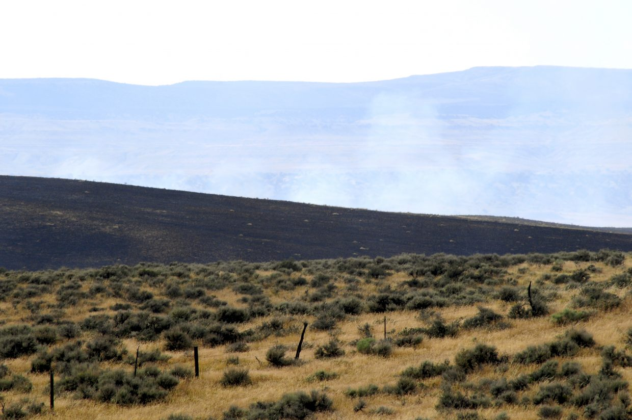 Burnt land left behind by the Alkali fire.