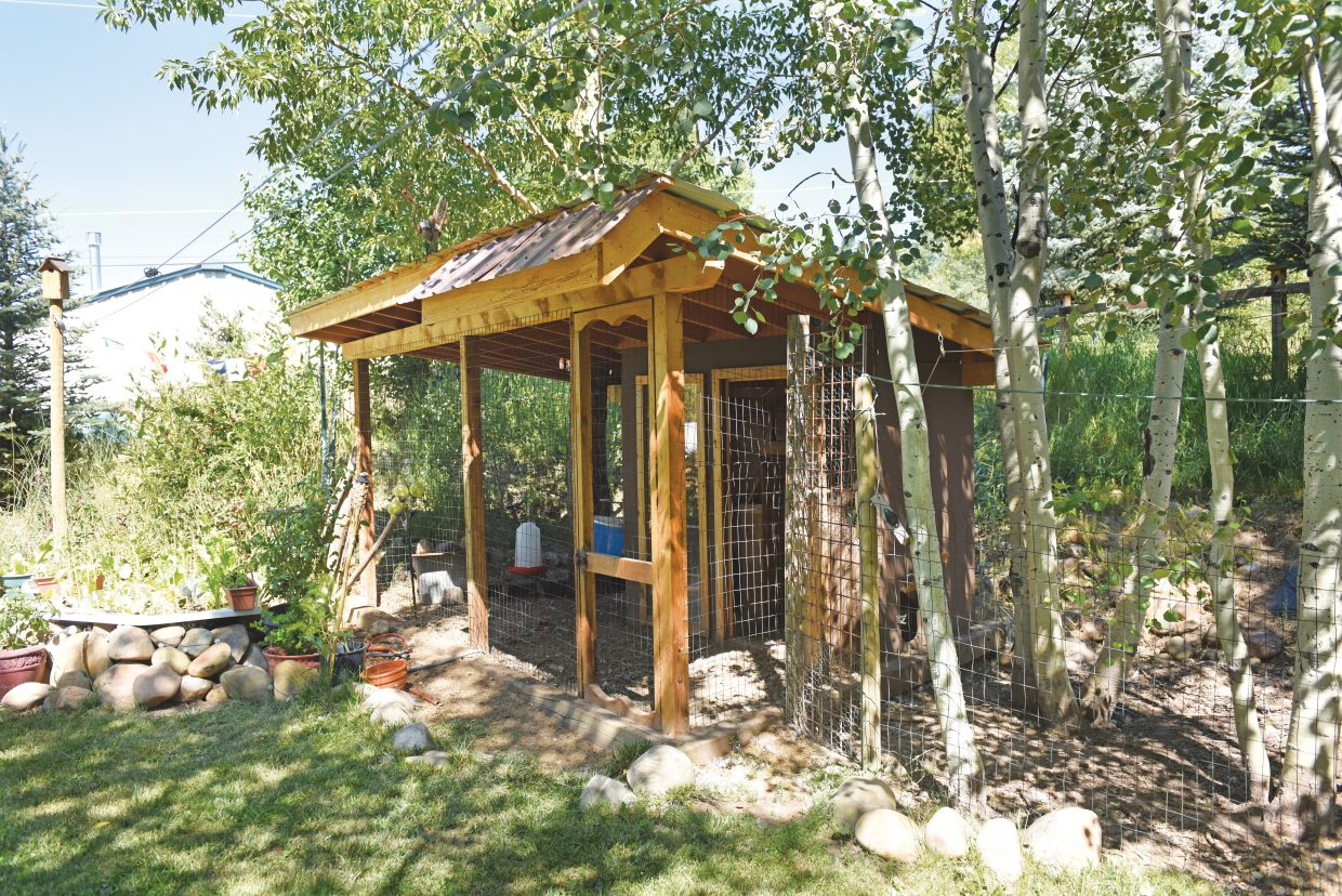 Johnny Walker's chicken coop on 859 North Park Avenue. Walker's property will be part of this year's Yampa Valley Sustainability Council's Tour de Coop.